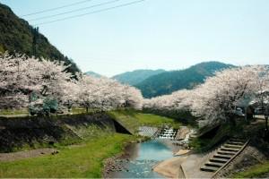 yohorogawa